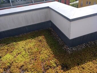Dachfassade linksalt rechtsneugestrichen