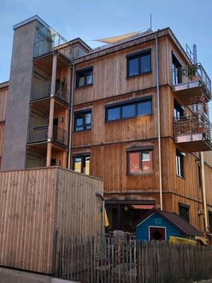 Fassadenmaterial Holz2 IMG 2091